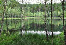 Relaks na łonie natury